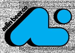 Aslin logo removebg preview